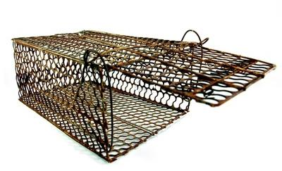 Cage et outils
